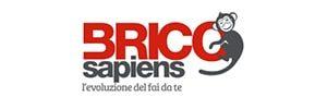 bricoservice-300x100